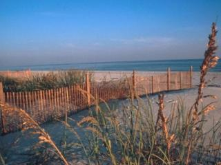 Homes For Sale in Gulf Shores, Orange Beach, Perdido Key