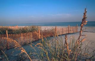 Phoenix VII Vacation Rental in Orange Beach Alabama